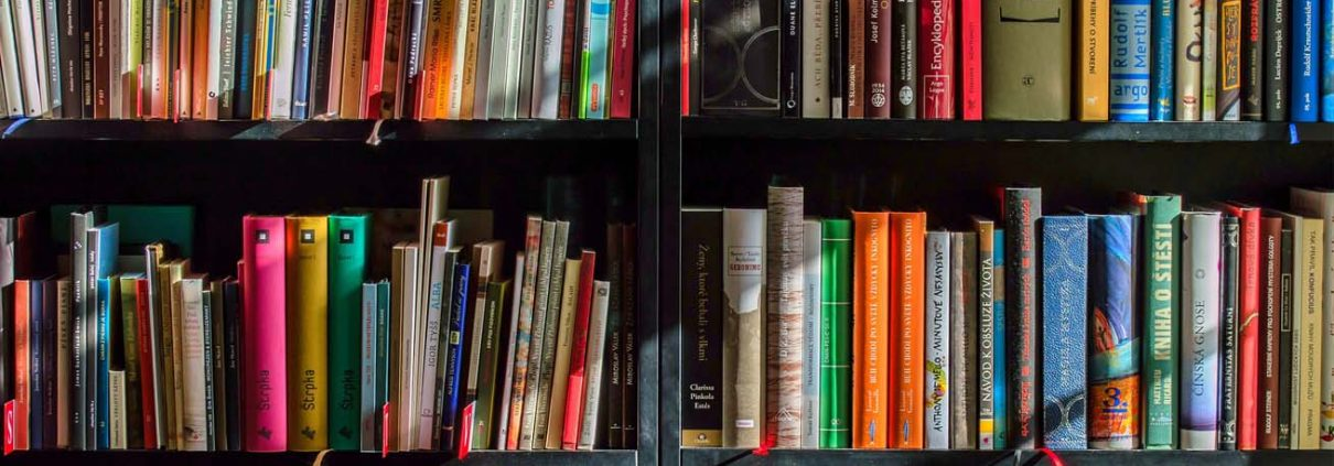 Shelves of coloured books